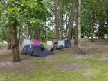 Waldcamping in Misdroy