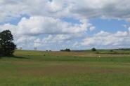 Im nördlichen Polen.