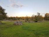 In vielen schönen Flächen gibt es Steinhaufen mit Bäumen und Gestrüpp.