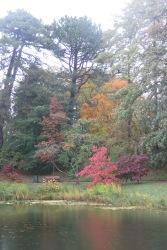 Im Botanischen Garten in Lund: Es wird Herbst.