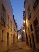 Orléans bei Nacht