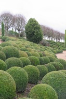 Val de la Loire: Schloss Royal Ambroise