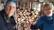 Holz gestapelt!