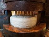 Der Roquefort wird gelöchert, damit der Blauschimmelpilz besser eindringen kann und zugleich genug Luft erhält.