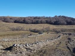 Regionaler Naturpark Aubrac