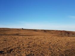 Aubrac: weite Weideflächen, wenig Bäume