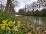 Frühling am Canal du Midi