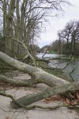 Reste eines kleineren Sturms am Canal du Midi